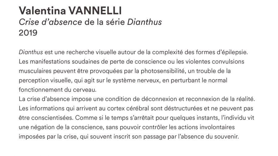 Valentina VANELLI · <i>Crise d'absence</i> · 2019