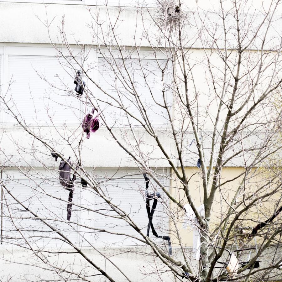 Une saison à Auber, « Le Joker », Aubervilliers • Adèle Rickard