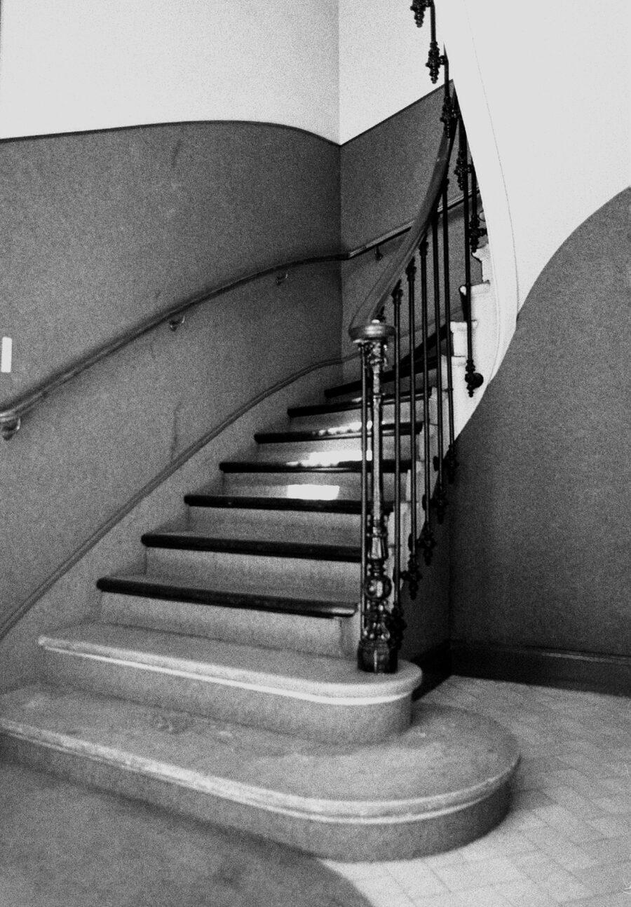 «Hall» • Dorothée Davoise
