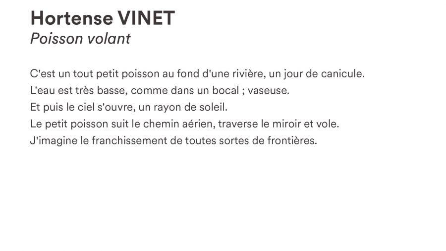 Hortense VINET · <i>Poisson volant</i>